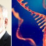 """El inventor de la tecnología de ARNm afirma que los vacunados son """"superdifusores"""" de COVID"""